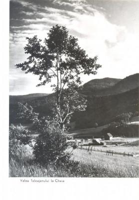 CP Z657 - VALEA TELEAJENULUI LA CHEIA -DATATA 1958 -RPR-NECIRCULATA foto
