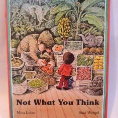 Carte pentru copii, in limba engleza, Not What You Think - Carte in engleza