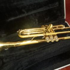 Trompeta bundy