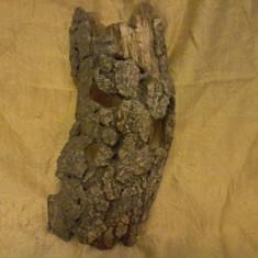 Decor Acvariu Scoarta de copac, Decoruri acvariu
