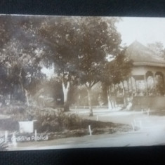 Bazargic -Gradina Publica. - Carte Postala Dobrogea 1904-1918, Necirculata, Fotografie