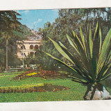 Bnk cp Baile Herculane - Parcul - circulata - marca fixa - Carte Postala Banat dupa 1918, Printata