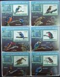 INS.COMORE - PASARI, 2009, 6 S/SH D LUX, NEOB. - ICO 46, Fauna