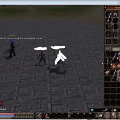 ALTI 200kk metin2.RO - DRAGON*NOU* server - Joc PC