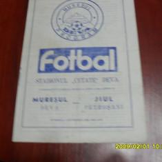 Program Muresul Deva - Jiul - Program meci