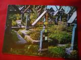 Ilustrata Sapanta - Cimitirul Vesel , anii '70, Necirculata, Printata