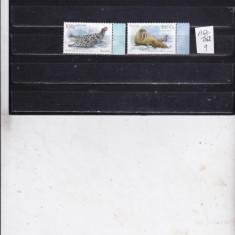 Islanda 1367 - 1368