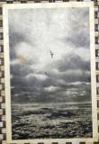 ROMANIA 1956. CONSTANTA. PEISAJ MARIN. CARTE POSTALA ALB-NEGRU CIRCULATA (PC28), Fotografie