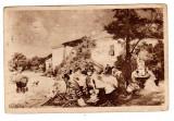 TH AMAN PETRECERE DE 1 MAIU   COLECTIA ARTISTICA  CARTEA ROMANEASCA, Circulata, Printata