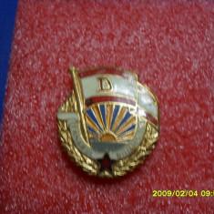 Insigna Tinarul dinamovist - Insigna fotbal