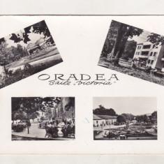 Bnk cp Oradea - Baile Victoria - circulata - Carte Postala Crisana dupa 1918, Printata