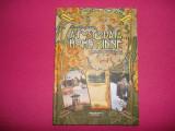 Dragoteanu , A fost odata Hohe Rinne , Istoria Paltinisului , 2014