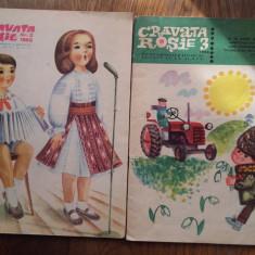 CRAVATA ROSIE, DIVERSE NUMERE - Carte de povesti