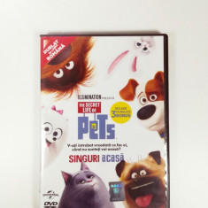 The Secret Life of Pets DVD, Romana, universal pictures