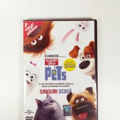 The Secret Life of Pets DVD - Film animatie universal pictures, Romana