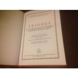 TRIODUL EDITIA 2010