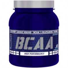 Fit Whey BCAA 500gr