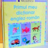 PRIMUL MEU DICTIONAR ENGLEZ-ROMAN de FELICITY BROOKS, CAROLINE YOUNG, 2008 - Carte de povesti