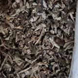 Plante legale 2018, produs aromat de ce-a mai buna calitate! - etnobotanice