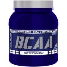Fit Whey BCAA 500gr - Aminoacizi