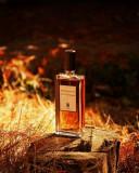 Parfum Original Serge Lutens- Nuit De Cellophane + CADOU, 50 ml, Apa de parfum