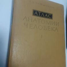 ATLAS DE ANATOMIE UMANA - SINELNIKOV - volumul 1 ( in limba rusa )