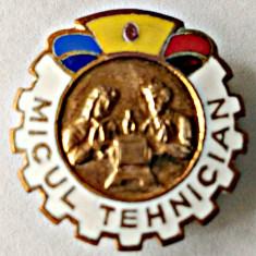INSIGNA PIONIERI PIONIER MICUL TEHNICIAN CAPUL DEPARTAT DE CERC 23 MM RAR