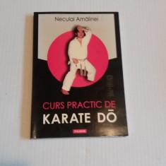 CURS PRACTIC DE KARATE DO - Neculai Amalinei - Carte sport