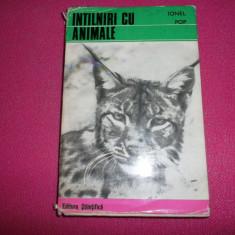 Ionel Pop Intalniri Cu Animale