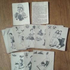 CARTI DE JOC TIP PACALICI FEKETE PETER VARIANTA MESERII COMPLECT 35 BUC - Joc board game