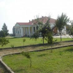 Vand conac boieresc sec.XIX la granita cu Ungaria refacut integral