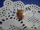 Insigna       CSU  Tg.  Mures