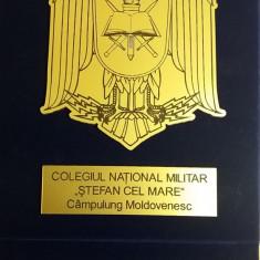 MPL5 - PLACHETA - COLEGIUL STEFAN CEL MARE - CAMPULUNG MOLDOVENESC