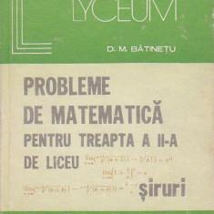 D. M. BATINETU - PROBLEME DE MATEMATICA PENTRU LICEU SIRURI - Teste admitere liceu