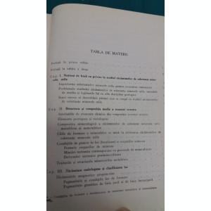 CONDIȚIILE DE FORMARE A ZĂCĂMINTELOR DE MINEREURI METALIFERE ȘI NEMETALIFERE