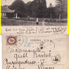 Vaculesti Tabacar (Botosani) -Parcul - clasica - Carte Postala Bucovina pana la 1904, Circulata, Printata