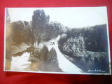 Ilustrata Craiova - Parcul Bibescu - Fotografie inedita circulat 1928, Circulata