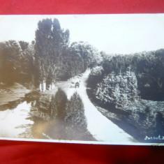 Ilustrata Craiova - Parcul Bibescu - Fotografie inedita circulat 1928