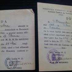 Lot 2 dovezi Institutul Central de Statistica/ 1943-44, iudaism, iudaica, evrei - Hartie cu Antet