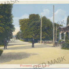 2318 - Vrancea, FOCSANI, Public Garden - old postcard - unused - Carte Postala Moldova 1904-1918, Necirculata, Printata