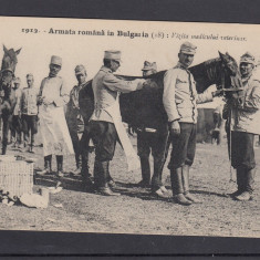 1913 - ARMATA ROMANA IN BULGARIA VIZITA MEDICULUI VETERINAR - Carte postala tematica, Necirculata, Printata