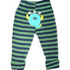 Pantaloni Carters din bumbac pentru bebelusi, Marime: 6-9 luni