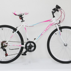 Bicicleta Sport Bike 26
