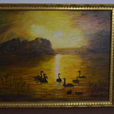 Tablou vechi pictat scoala engleza /Tablou vechi Anglia/ Pictura veche, Pasari, Ulei, Realism