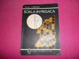 Boala In Prisaca / Constantin Hristea