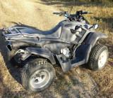ATV  250 cm, Polaris