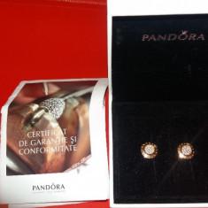 Cercei Pandora placati cu aur - Cercei argint