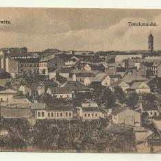 Cp CERNAUTI : VEDERE GENERALA - 1918 - Carte Postala Bucovina 1904-1918, Necirculata, Fotografie