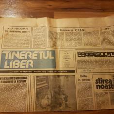 Ziarul tineretul liber 4 februarie 1990-art.