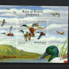 Romania MNH 2007 - LP 1772 - Rate si gaste salbatice - colita - cel mai ieftin - Timbre Romania, Nestampilat